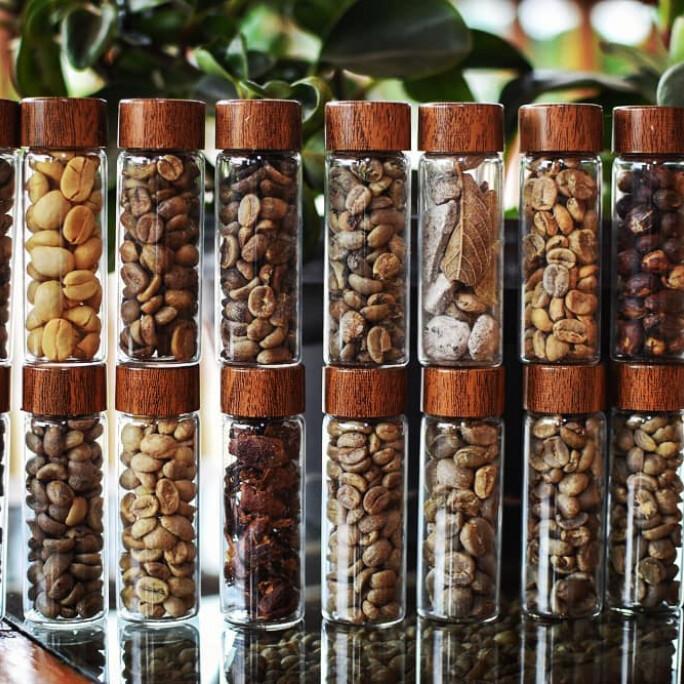 Arabica Green Coffee Defect Kit #8